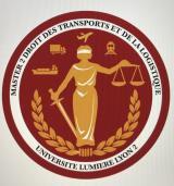 Logo M2DTL